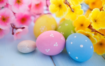 Easter Eggs and Spring Blossoms Wallpaper