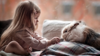 Cute girl Playing with Rabbit Wallpaper
