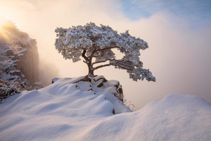 South Korea December Winter Wallpaper