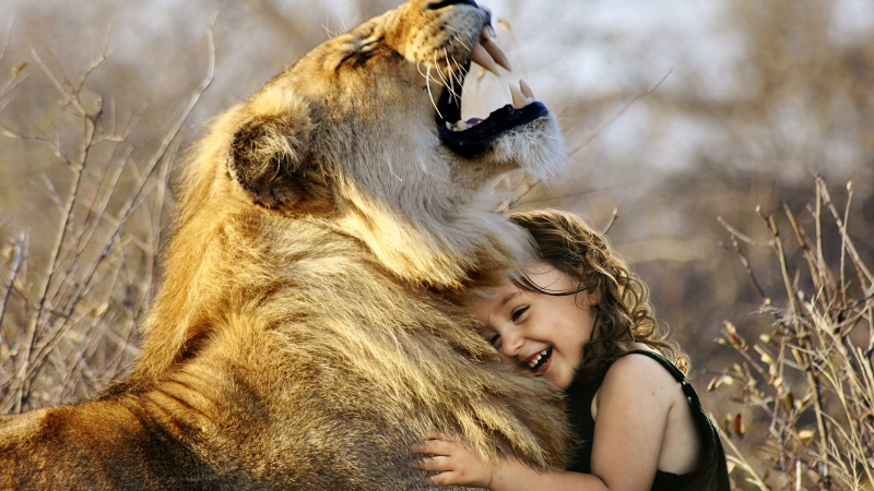 Cute girl with Lion Wallpaper