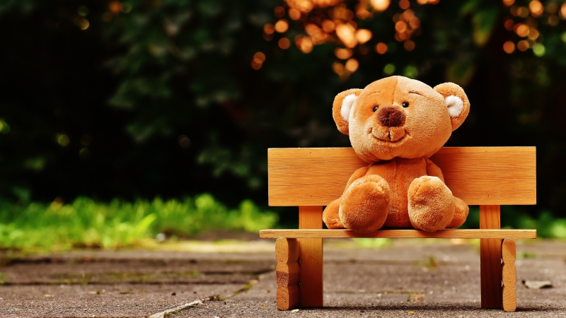 Cute Teddy bear at Park 5K Wallpaper
