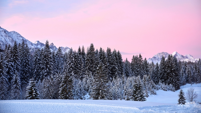 Mountains Trees Pink Snow 4K HD Wallpaper