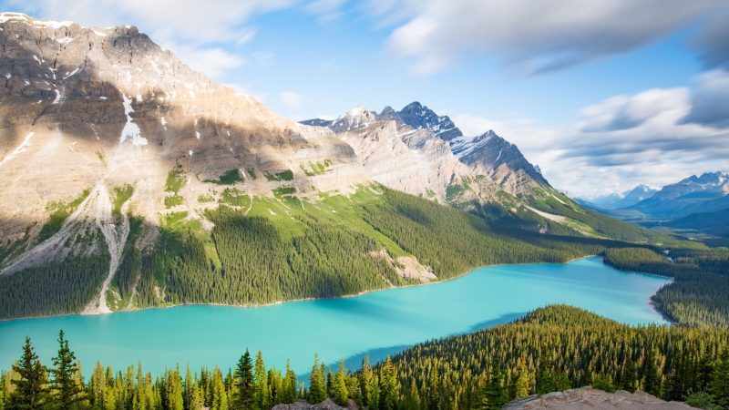 Lake Mountains Trees Spruce Landscape 4K HD Wallpaper