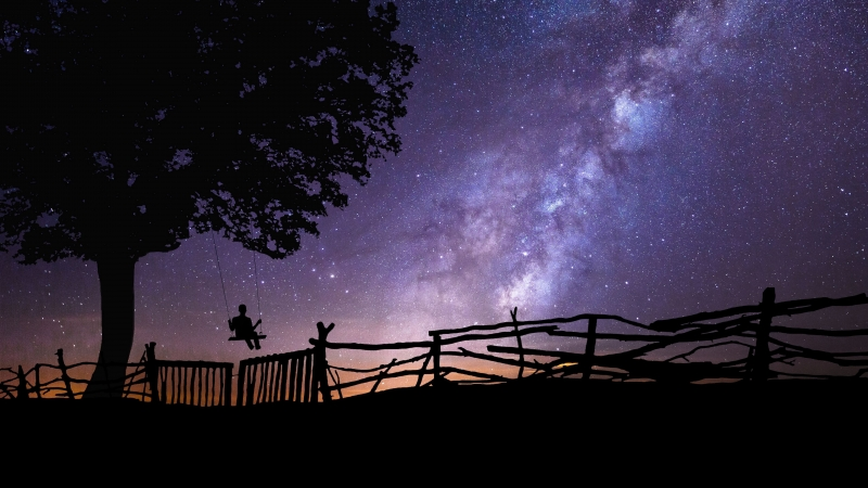 Starry Sky Silhouette Swing Tree Night 4K HD Wallpaper