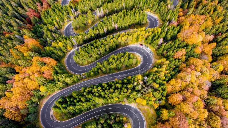 Aerial Curved Road Surrounded By Green Trees 4K HD (2) Wallpaper
