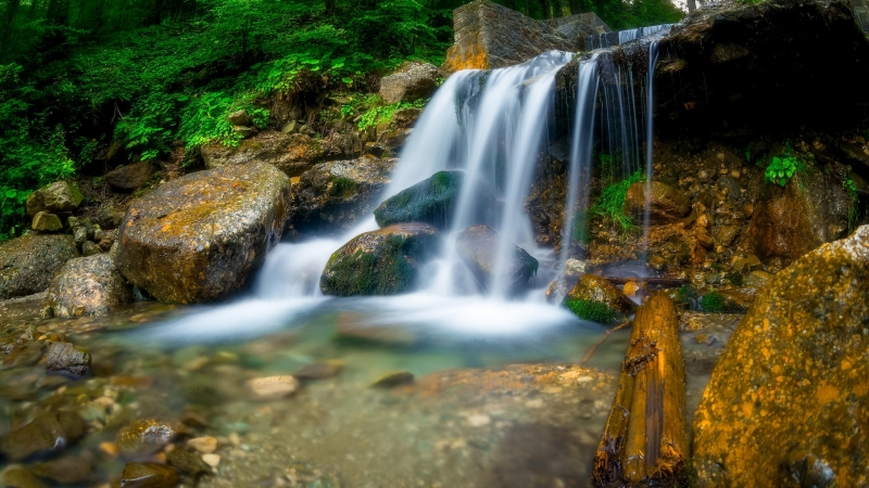Waterfall Between Trees, Rocks During Daytime HD Wallpaper