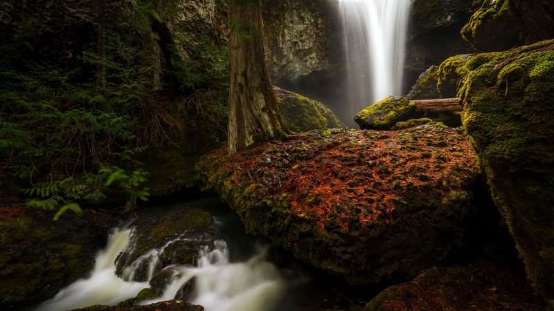 Forest Waterfall Between Green Covered  Rocks 4K HD Nature Wallpaper