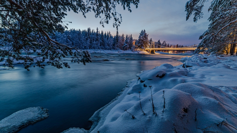 Snow Covered Trees With Bridge Under Lake 4K HD Nature Wallpaper