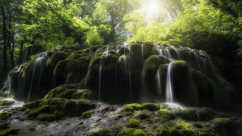 Sunlight Passing Through Green Leaves Under Green Covered Rocks In Waterfall 4K HD Wallpaper