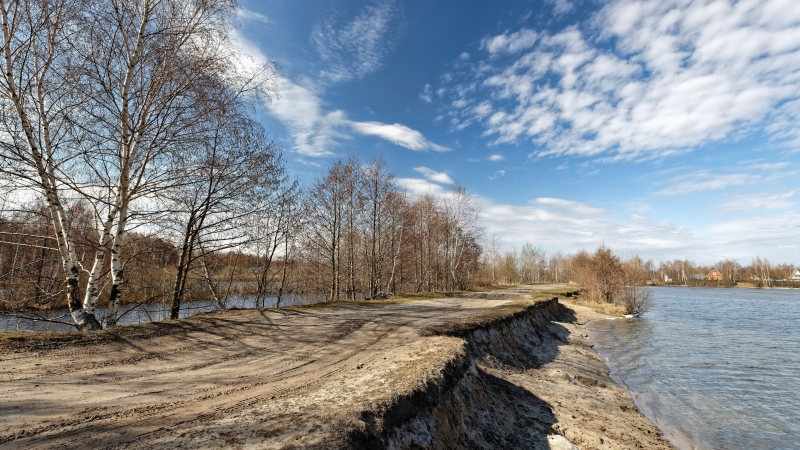Dry Trees Between River Under Clouds During Daytime 4K HD Natue Wallpaper