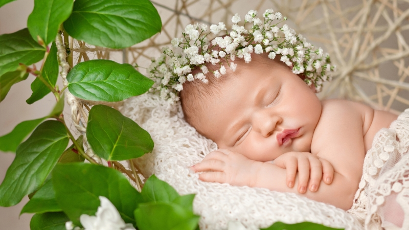Cute Baby Sleeping 2 4K HD Cute Wallpaper