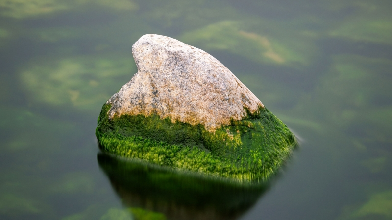 Green Covered Earth Stone Between Water During Daytime 4K HD Nature Wallpaper