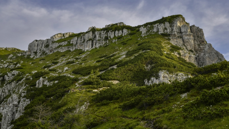 Green Covered Mountain During Daytime 4K HD Nature Wallpaper
