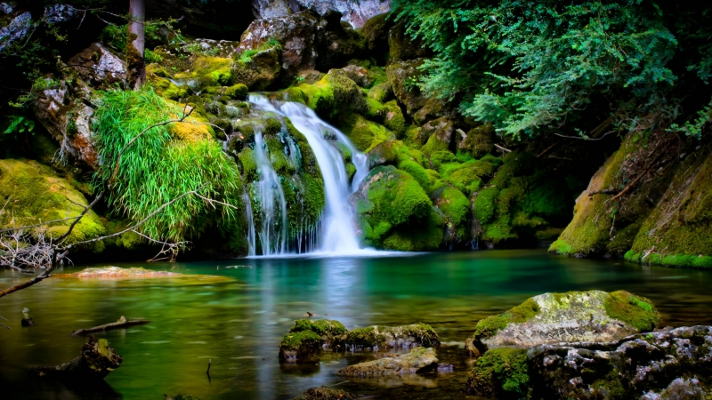 Green Covered Rocks With Green Trees Between Waterfall 4K HD Nature Wallpaper
