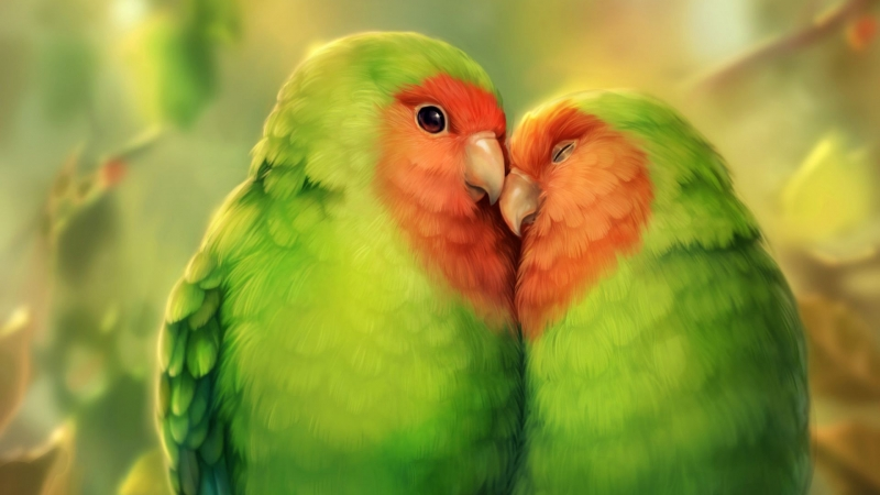 Parrots Birds Art HD Animals Wallpaper