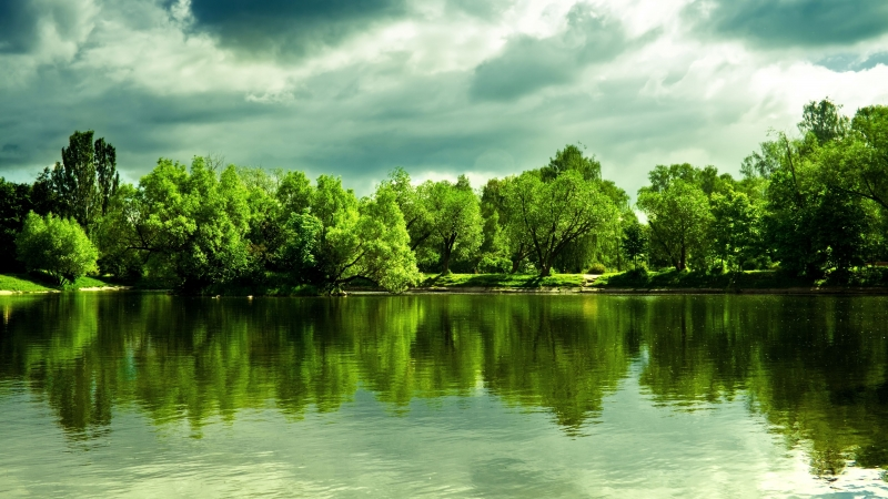 Green Trees In Front Of Lake With Cloudy During Daytime 4K 5K HD Nature Wallpaper
