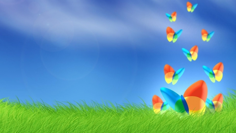 Animated Colorful Butterflies HD Animated Wallpaper