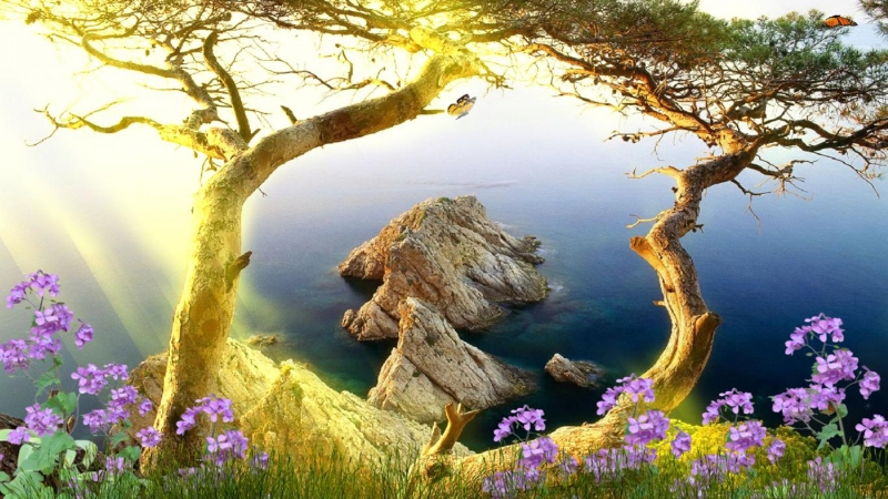 Beautiful Animated Nature Scenery HD Animated Wallpaper