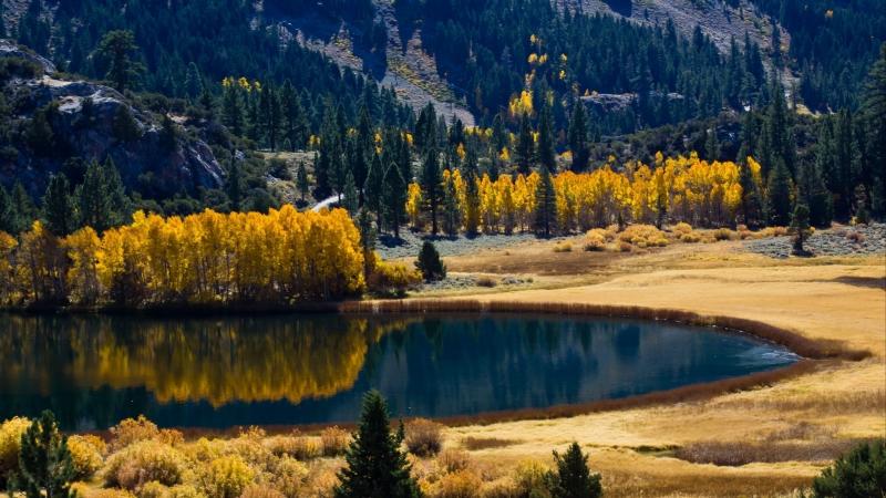 Lake Surrounded By Autumn Trees And Mountains 4K HD Nature Wallpaper